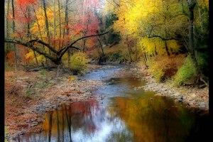 Autumn-Stream-in-Pennsylvania