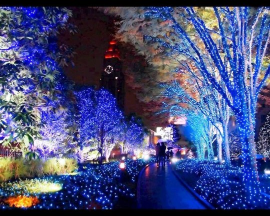 happy-new-year-lights