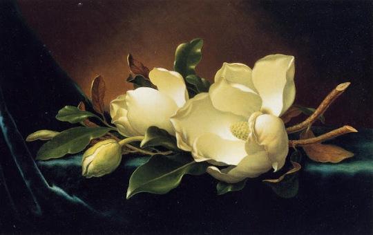 Martin Johnson Heade 1819-1904 - Tutt'Art@