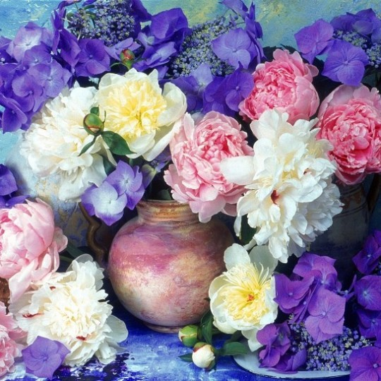 peonies_hydrangea_flowers_painting_jugs_flower_beauty_34870_1024x1024