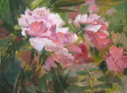 peony-blooms