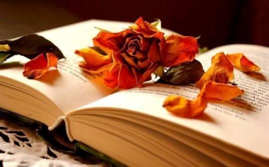 de ziua poetilor
