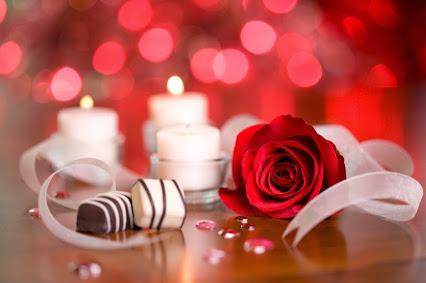 Romantic roses bokeh