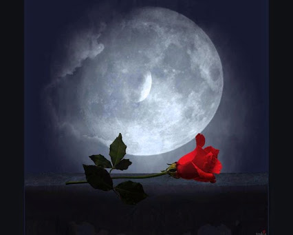 5 luna rosas[1]