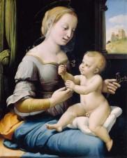 madona_cu_garoafe(1506-1507)