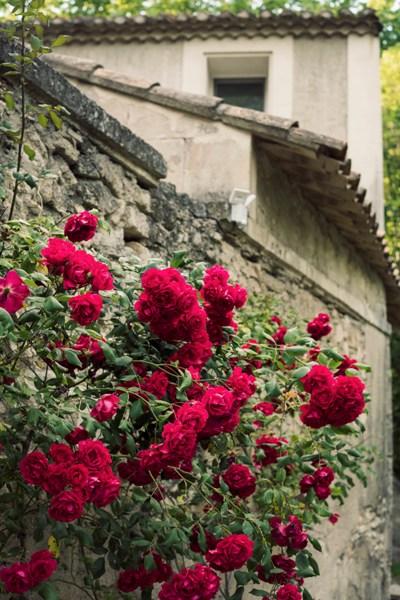 Chateau_des_Alpilles041