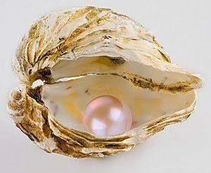 perla in scoica